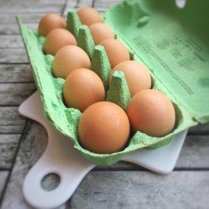 Dank Eiern baut sich der Giftstoff schneller ab