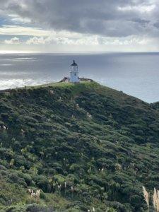Nordinsel Neuseeland mit Kindern